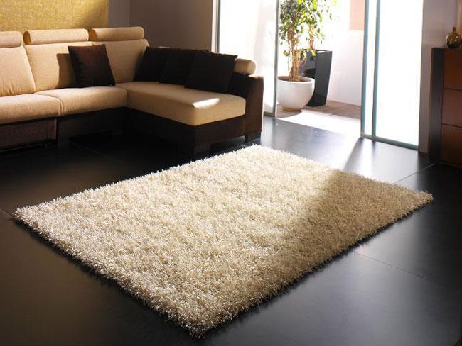 C mo limpiar una alfombra como limpiar - Alfombras de habitacion ...